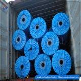 Bâche de protection imperméable à l'eau de PE de qualité directe d'usine
