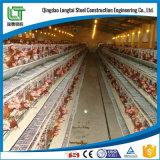 Edifício pré-fabricado da construção de aço da exploração agrícola de galinha