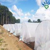 A tela não tecida do Polypropylene para a colheita cresce a coberta