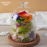 Tipo Handmade fiore di tocco del fiore reale naturale di 100% della lampada di notte per il regalo