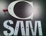 Placas de LED / LED Logo / LED Words / LED Pictures