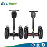 De Zelf In evenwicht brengende Elektrische Autoped 4000watt van Ecorider van de Autoped van de Weg
