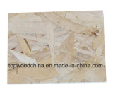 OSB (tarjeta estructural orientada) para la construcción de /Indoor de los muebles/la construcción al aire libre