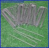 De vierkante Bovenkant Gegalvaniseerde Nietjes van de Tuin/de U-vormige Spijkers van het Gras