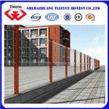 Rete fissa rivestita della rete metallica del PVC doppia (tyb-0071)