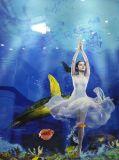 De beste 3D Lainate Bevloering van de Kwaliteit AC4 & AC5 van Jiangsu