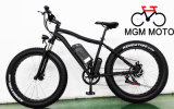 500W FAT Electric Bicycle