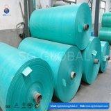Bâche de protection imperméable à l'eau directe de PE d'usine de qualité