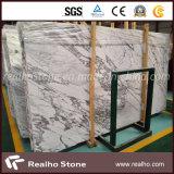 Nuevo mármol blanco barato de Staturio con la losa/el azulejo/el suelo de la pared