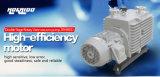 글로브 박스 사용된 두 배 단계 바람개비 진공 펌프 (2RH065)