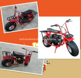196cc Motorike met EPA en Ce