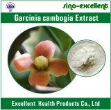 Выдержка 60% 70% 90% Hca Cambogia Garcinia управлением веса