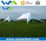 家族会のための防火効力のある星のテント