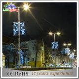 Luz de calle solar decorativa del precio LED de la eficacia alta mejor