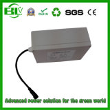 Batterie Lithium Ion Batterie Solar Street Light 12V Batterie 50ah 30ah LiFePO4 Batterie de stockage d'énergie solaire