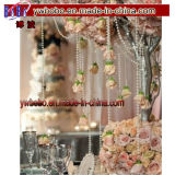 Fournitures de mariage Garland Spool Rope Wedding Party Hanging Decor (W1049)