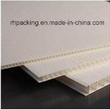 strato riciclabile del policarbonato del migliore strato offerto fabbrica pp di prezzi pp Correx di 4mm 1220*2440mm
