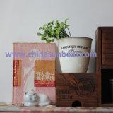 Sunboat 물 컵, 사기질 컵 우유 커피 잔 취사 도구 부엌 가전용품 식기