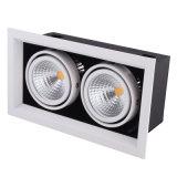 2*20W 높은 루멘 AR111 LED 석쇠 빛
