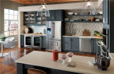 Cozinha cinzenta contemporânea do estilo americano do abanador