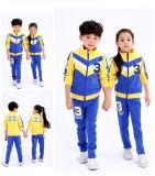 2016년 OEM 겨울에 의하여 인쇄되는 Emberoidered 아이들 교복