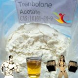 Tren As injizierbares Trenbolone Azetat zum Bodybuilding 100mg/Ml