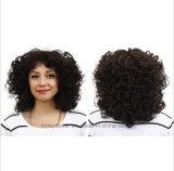 Parrucca riccia lanuginosa di modo della donna europea ed americana della parrucca