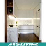 Gabinetes de cozinha modernos da cor dobro da U-Forma (AIS-K973)