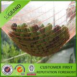 Réseau de Havest, réseau olive/compensation olive, réseau en plastique de maille, pour le constructeur net olive de vente