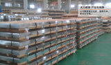 Precio inoxidable de la placa de acero 304 resistentes a la corrosión