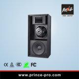 Im Freien leistungsfähiges Audiogeräte PA-Lautsprecher-Kasten-System