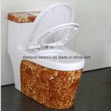 Carte de travail monopièce de couleur de toilette de toilette en céramique avec le type populaire de texture en pierre (A-009S)