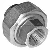 Steel fucinato Threaded o Socket Welded Union