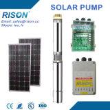 Prix de l'essence solaire submersible de C.C de la Chine (5 ans de garantie)