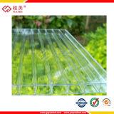 para el invernadero, vidrio hueco del policarbonato de Lexan del claro de 8m m precio grabado del panel (YM-PC-193)