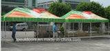 卸売の六角形の鉄骨フレームの表示によってはテントのおおいが現れる