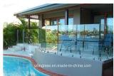 Freies Hartglas für Swimmingpool-Zaun