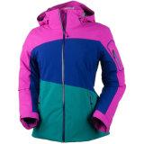 여자의 다채로운 형식 경량 Primaloft에 의하여 격리되는 스키 재킷