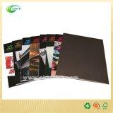 Изготовленный на заказ печатание каталога/брошюры/буклета для заедк (CKT-BK- 315)