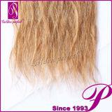 Venda em linha quente de duas extensões brasileiras do cabelo do cabelo da trança do tom
