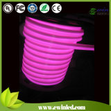 Miky 백색 PVC 외투 (10*24mm)를 가진 소형 LED 네온 코드