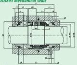 Burgmann mechanische Standarddichtung mit Ausgleich-Typen (HBB803)