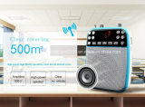 Altoparlante con il MP3 Player/Loudspeaker/Amplifier (F73)