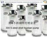 Pumpe des Edelstahl-304