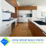 Armadi da cucina moderni della mobilia della casa di rivestimento dell'impiallacciatura (ZY 1019)