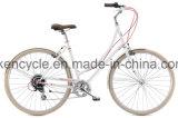 """حارّ يبيع 28 """" [ستيل فرم] مدينة 7 سرعة فهرسة درّاجة إطار [كلسّيس] [دوتش] درّاجة"""