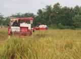 크롤러, 2.0m 절단 폭, 스리랑카를 위한 88HP 밥 수확기