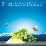 Mannufacturer fornece esteróides do hidrocloro de Procaine de 99%/Procaine