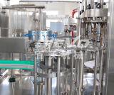 Machines de mise en bouteilles d'animal familier de jus de fruits automatique de bouteille