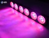La vendita calda LED coltiva 270W chiaro con il chip di Epistar 3W